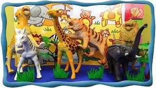 Африканские животные. Кто в Африке главный? Знакомим детей с животными африки. Обучающее видео