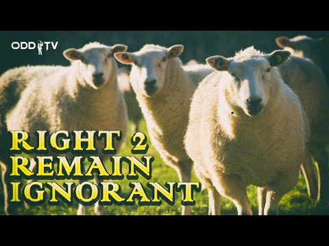 O.D.D TV | Right 2 Remain Ignorant (feat. Steve Grant)