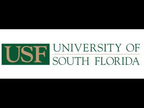 MBA - Master Business Degree Administration - University of South Florida