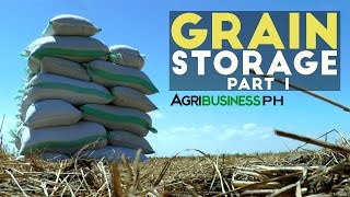 The importance of grain storage solution in the Philippines : Grain Storage Solution  Part 1.