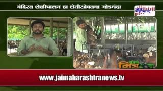 Sheti Mitra: Goat farming