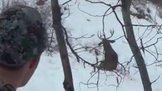 Amazing hunting kill shots