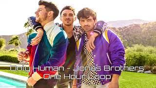 Human - Jonas Brothers - One Hour Loop
