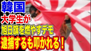 🇰🇷韓国の大学生が旭日旗を燃やすデモで逮捕!…【韓国ニュース:韓国の反応】