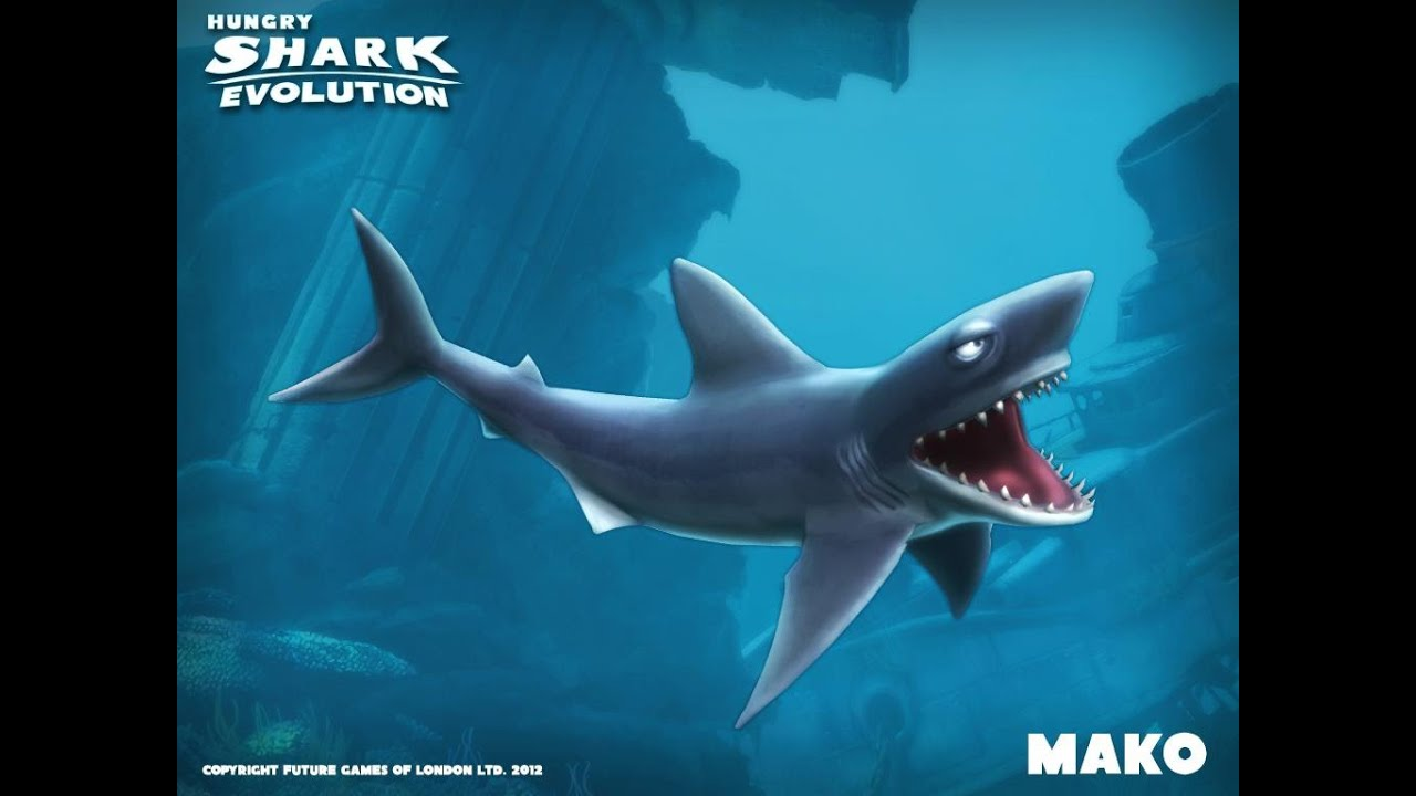 Nuovo Squalo Mako Negli Oceani Hungry Shark Evolution 4