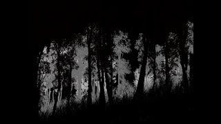 [LIVE] 【Apex legends】暇杉剣心 ロボコップ練習  【エーペックスレジェンズ】