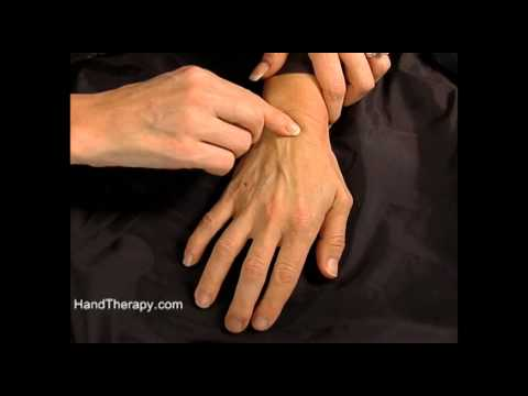 How to palpate the carpal bones in the wrist - YouTube