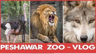 Peshawar Zoo - VLOG