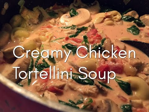 QUICK AND EASY Chicken Tortellini Soup