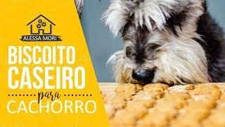 ⭐ biscoito caseiro para cachorro fácil e saudável