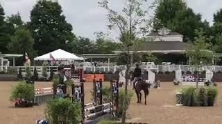 Dharmawind .85m Jumper GP ring Equifest 2018