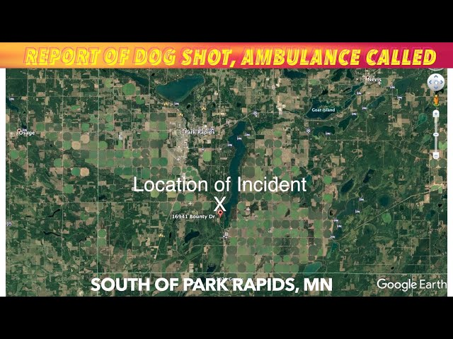 BREAKING NEWS: Report Of Dog Shot, Ambulance Called Near Park Rapids, MN