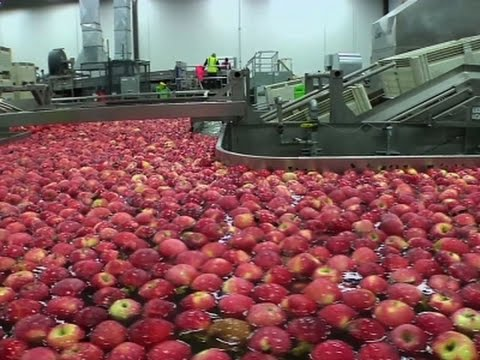 Washington State's New Apple Joining Industry