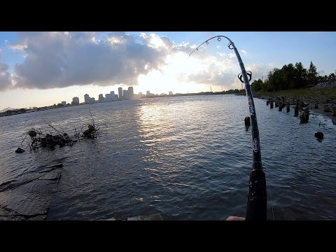 Cast Net Salvage & Fishing For White Bass, Eel,And Catfish