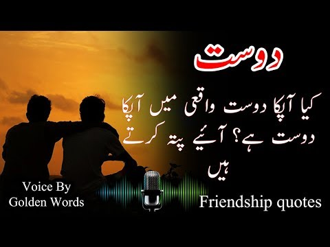 21 Best Ever Friendship Quotes In Urdu And Hindi | The Friend In Need Is A Friend Indeed