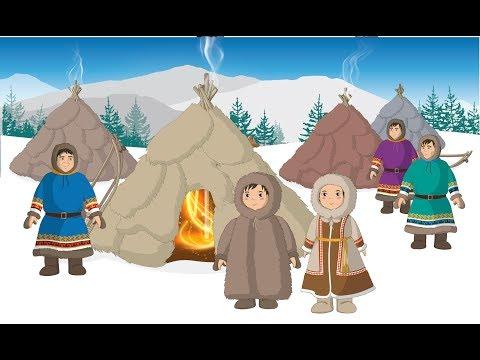 Мультфильм про тундру и арктику для школьников