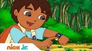 Гоу, Диего, Гоу!   Поиски ламы   Nickelodeon
