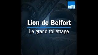 Lion de Belfort | Le grand toilettage