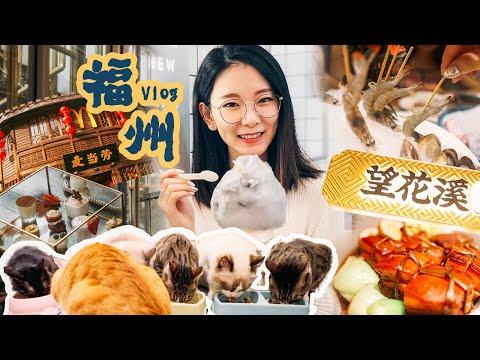 福州Vlog | 离开前的狂欢之海鲜吃到过敏| 撸猫 | 下午茶 | 三坊七巷 | 依然还有小龙虾