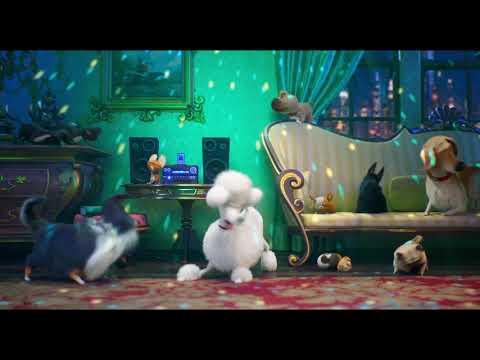 EVCİL HAYVANLARIN GİZLİ YAŞAMI 2   Türkçe Dublajlı Video   Çılgın Köpekler