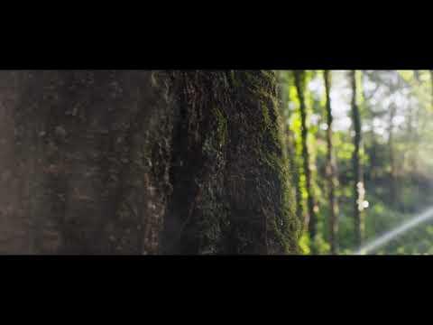 Green Morbihan : présentation de la démarche Green ! - Version courte