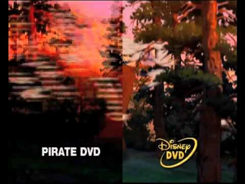 how to stop pirated from pirateing
