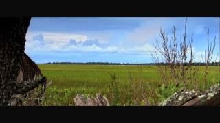 Ocean Park: Evolution of the Extraordinary on Kiawah Island