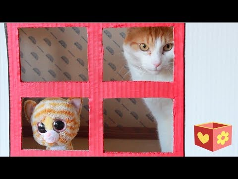 Video for children to watch | Cute cat Simba and George | New house