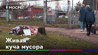 Живая куча мусора / Крупное ДТП на Ленинградке // Новости 360° Солнечногорье 18.10