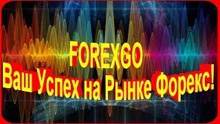 FOREXGO - Ваш Успех на Рынке Форекс!