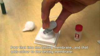 What Does a Rapid HIV Test Look Like?