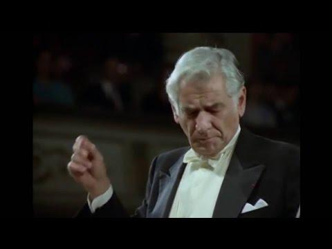 Beethoven - String Quartet No. 14 in C♯ minor (Bernstein)