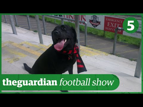 Non-league football: why bother? | Guardian Football Show