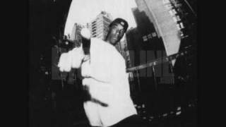 Download Big L - Unexpected Flava [High Quality] [Lyrics] MP3 song and Music Video