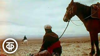 Люди Горного Алтая. Фрагмент документального фильма (1971)