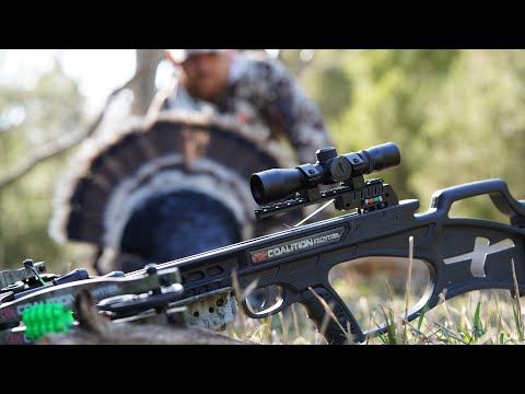Hunting with a crossbow?!?! Nebraska Public Land Gobbler