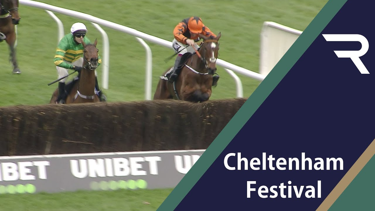 Betting directory horse racing nap day english horse betting odds difference between psychologist