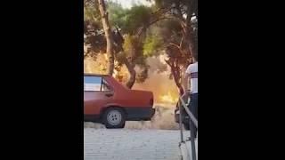 """Çanakkale Belediye Başkanı Ülgür Gökhan """"Olayı Abartmayalım"""""""