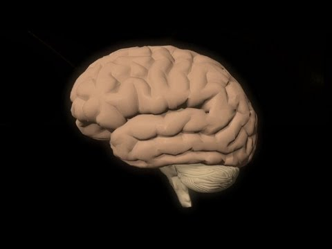 Yapay Zeka İle Erken Alzheimer Teşhisi