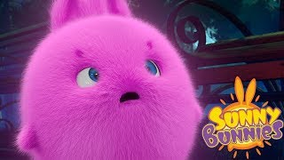 Cartoons for Children | SUNNY BUNNIES GHOST TOWN | Funny Cartoons For Children