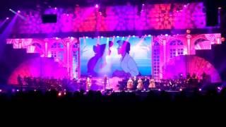 Шоу в Лужниках Волшебное созвездие Disney видео 4