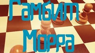 Гамбит Морра без фигуры!  Шахматы онлайн! lichess(, 2016-04-03T15:17:55.000Z)