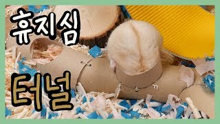 휴지심으로 수제 햄스터 터널 만들기 (Homemade : Make a Hamster tunnel out of waste paper)