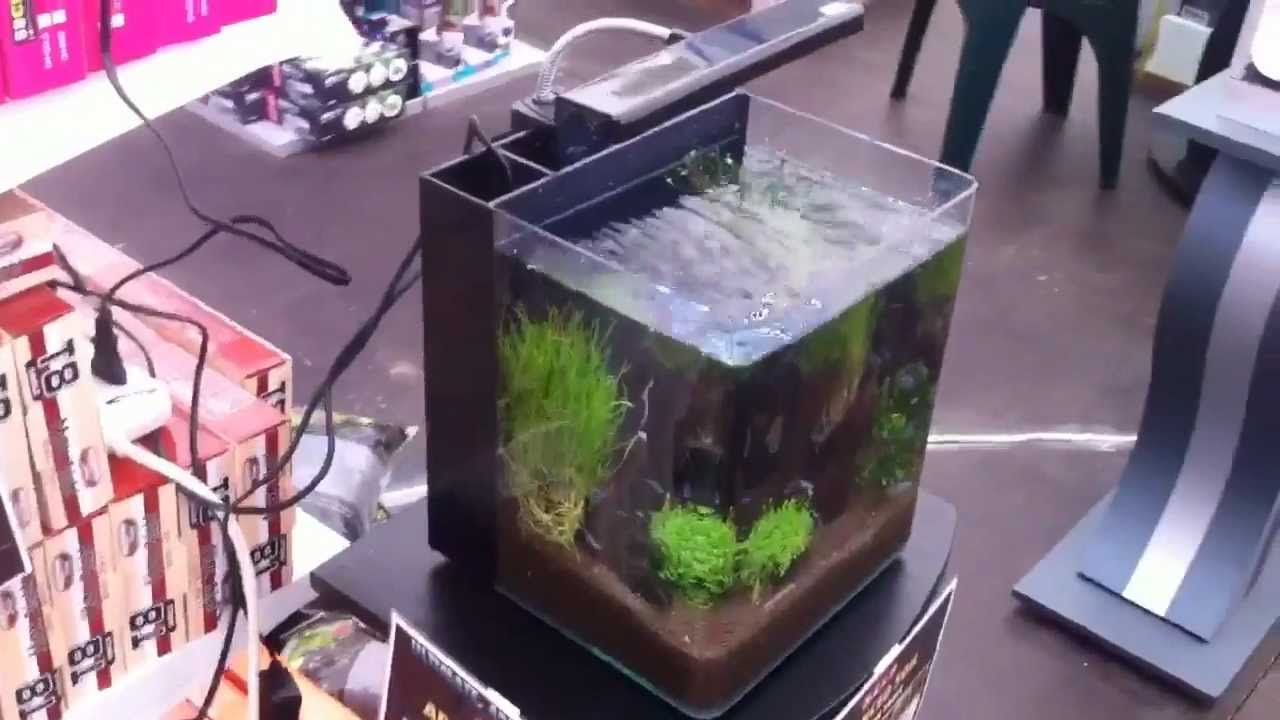 Ocean free nano aquarium youtube for Oceanic fish tanks
