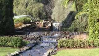 Tauranga Yatton Park