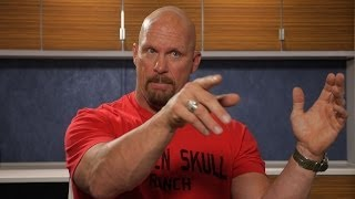 Best of the Beast: Steve Austin Talks Brock Lesnar