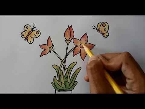 Cara Menggambar Serta Mewarnai Bunga Dan Kupu Kupu How To Draw A