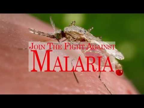 Download Malaria Day 2018 | ready to beat malaria | Fight malaria