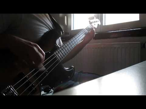 Rage Against The Machine-Killing In The Name (Bass Cover)