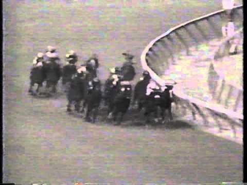 1991 NYRA Mile H. -- Rubiano